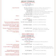 Novità sostanziali e processuali nel diritto tributario e penale tributario (piattaforma ZOOM, 11 e 12 novembre 2020)